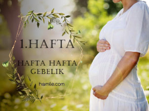 1. Hafta Hamilelik