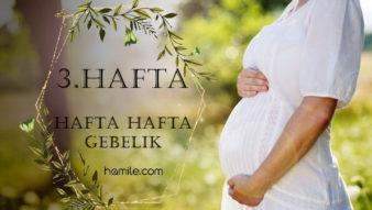 3. Hafta Hamilelik